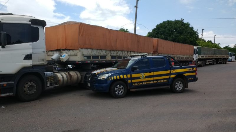 PRF apreende 4 caminhões após constatar crime ambiental