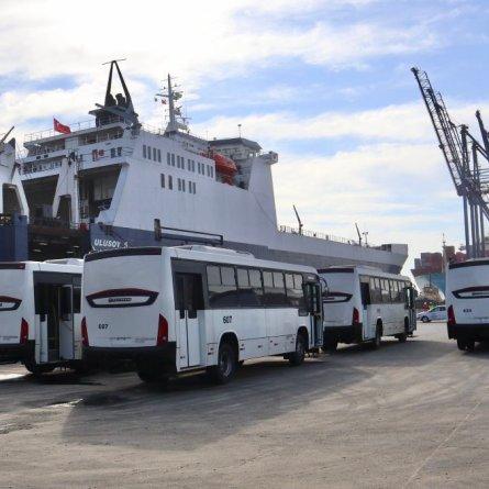130 ônibus são embarcados em operação inédita no Porto de Paranaguá