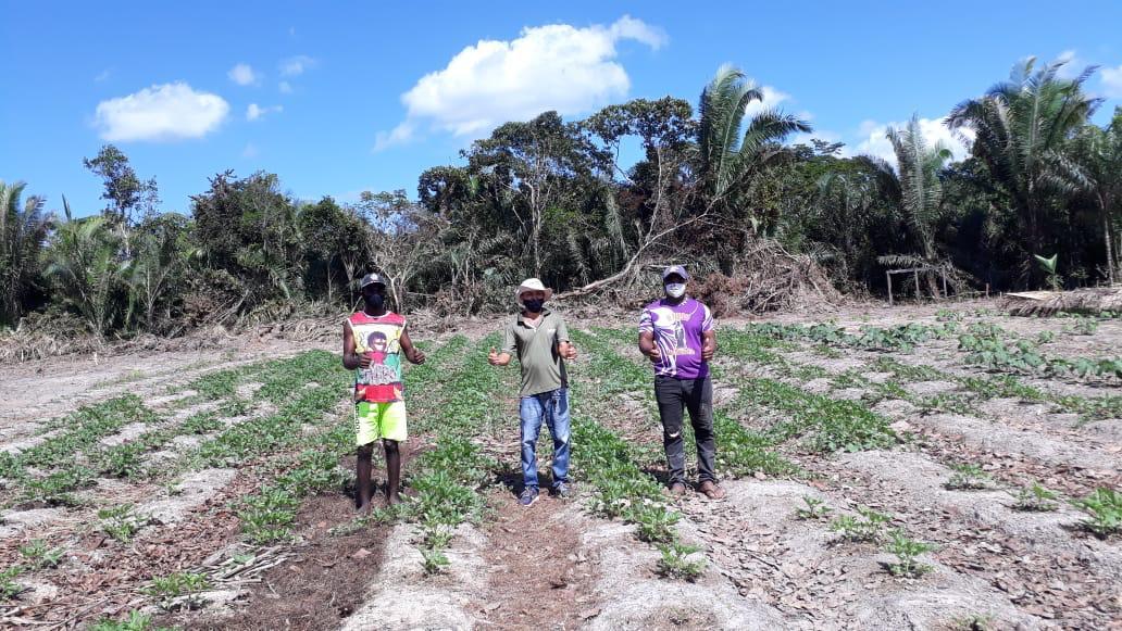 Aumento de campo agrícola, beneficia agricultores familiares atendidos pela Agerp em Bequimão-MA