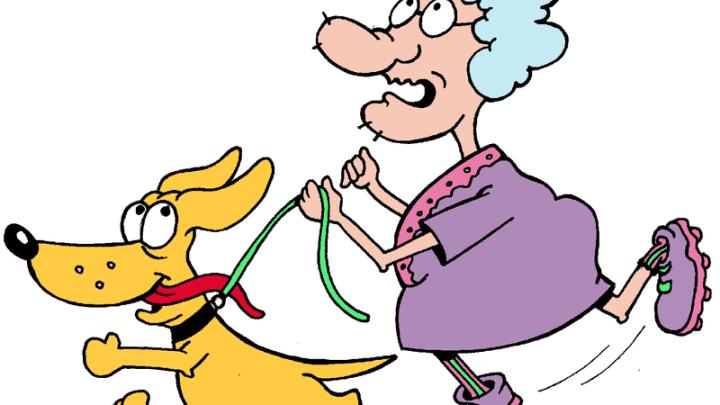 Esses Ingleses Maravilhosos e suas Pesquisas Voadoras XXII – Idosos que têm cães caminham 23 minutos a mais