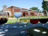 wine-bar-montevideo-blogdoferoli