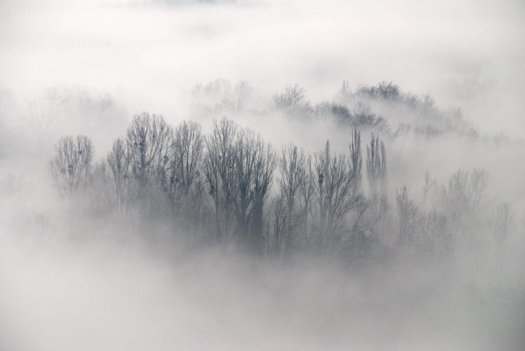 fog-06-1024x685
