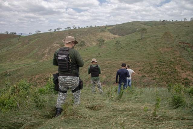 Operação Mata Atlântica em Pé identifica seis pontos de desmatamento na Paraíba