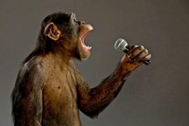 Macaco com microfone