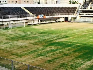 Vila Belmiro gramado