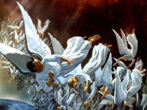 anjos expulsos