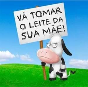 leite-de-vaca-para-bezerros-1