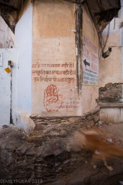 Udaipur_141127-194