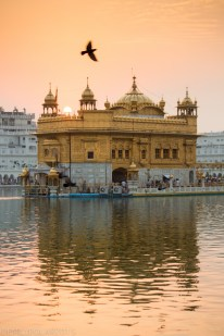 Golden_Temple_141024-367