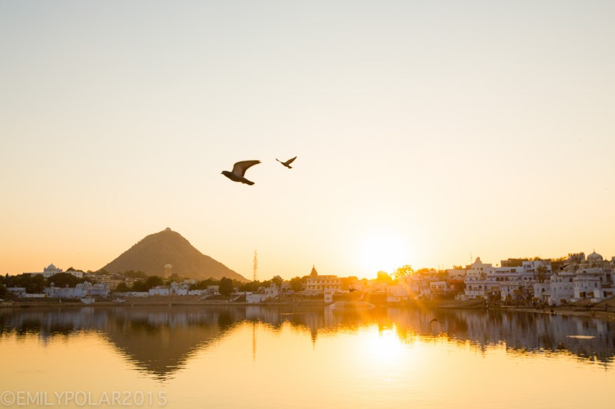 Pushkar_141122-143