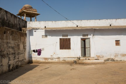 Pushkar_141125-73