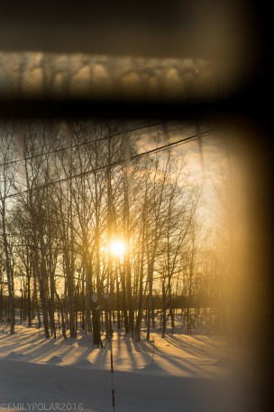 Beautiful sunrise through the trees and snow framed by a window and icicles in Niseko, Japan.