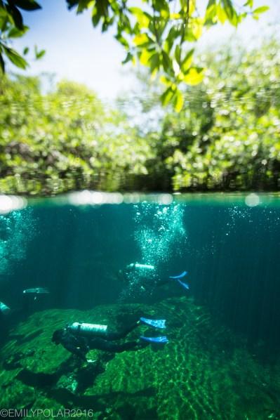 casa_cenote_160720-181