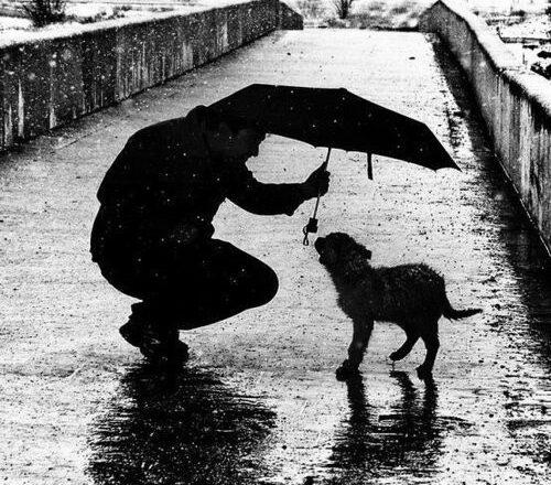 As melhores fotos de chuva