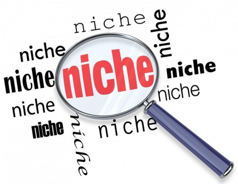 Choose The Right Niche For Your Blog