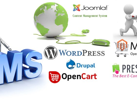 How To Choose an Effective Content Management System (CMS)
