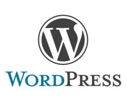 Urgent WordPress Upgrade Alert