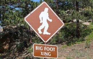 Gone Sasquatchen: Big Foot Lives