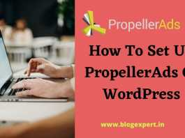 How to setup propellerads in wordpress