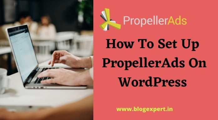 How to setup propellerads in wordpress