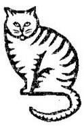 Como Cuidar Bem do Seu Gato – Obesidade Sob Controle (1/2)