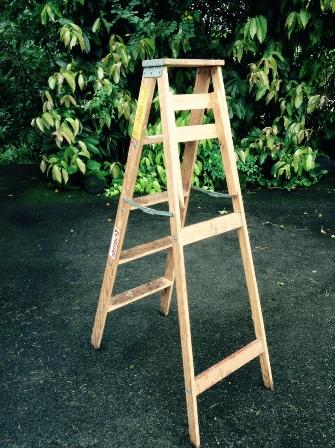 ladder photo courtesy of Carolyn Classen