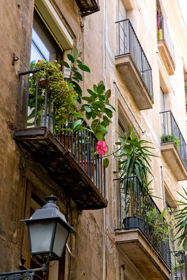 Barcelona_2010 (12 av 123)
