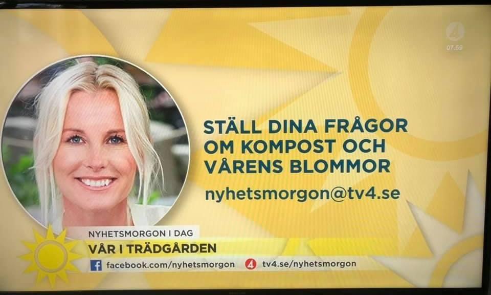 Victoria Skoglund på TV4