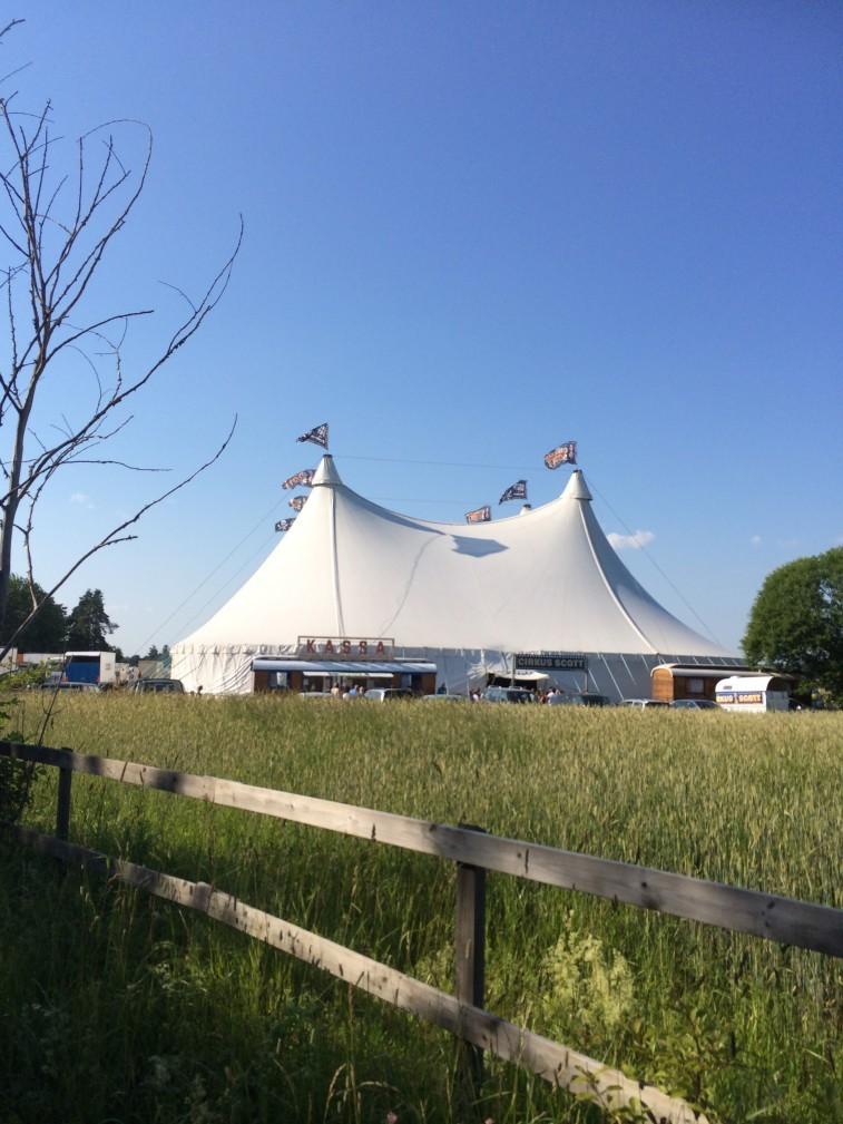 Cirkus scott