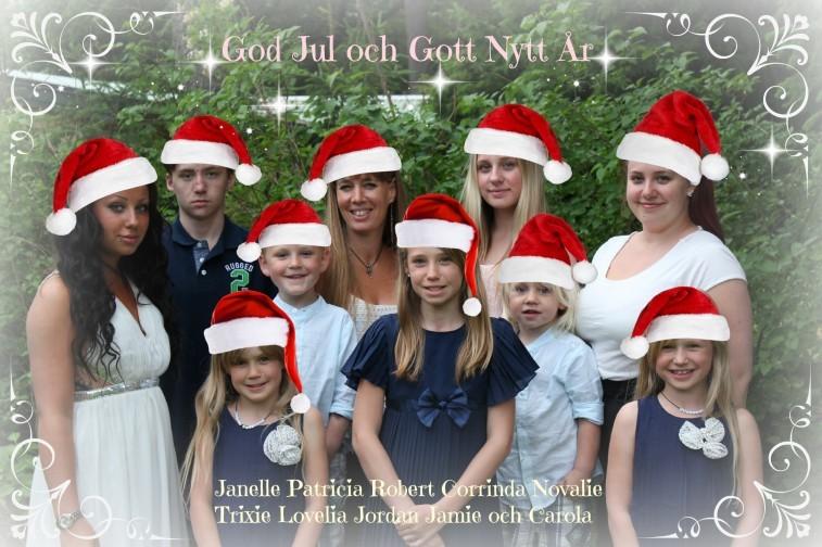 julkort 2014 familjen wetterholm