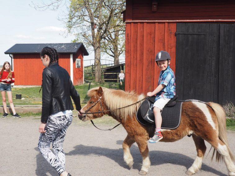 jordan ponnyridning