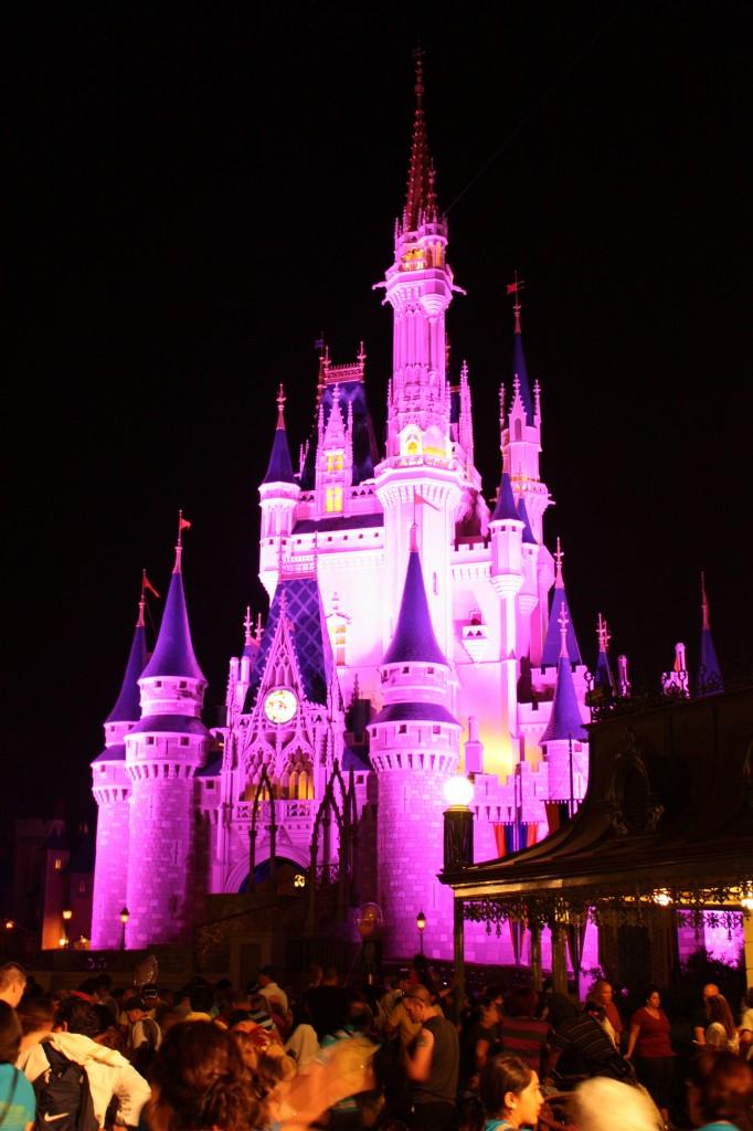 Cinderella Castle by night