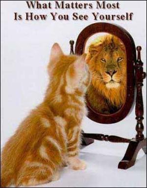 Bildresultat för spegelbild