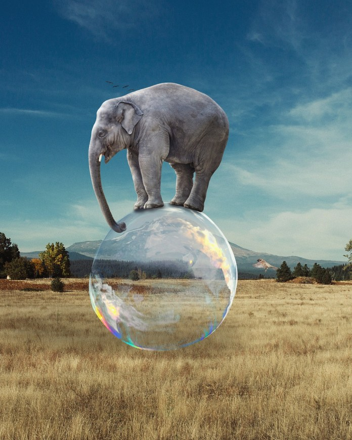 Elephant Bubble Balance Surreal  - DimaDim_art / Pixabay