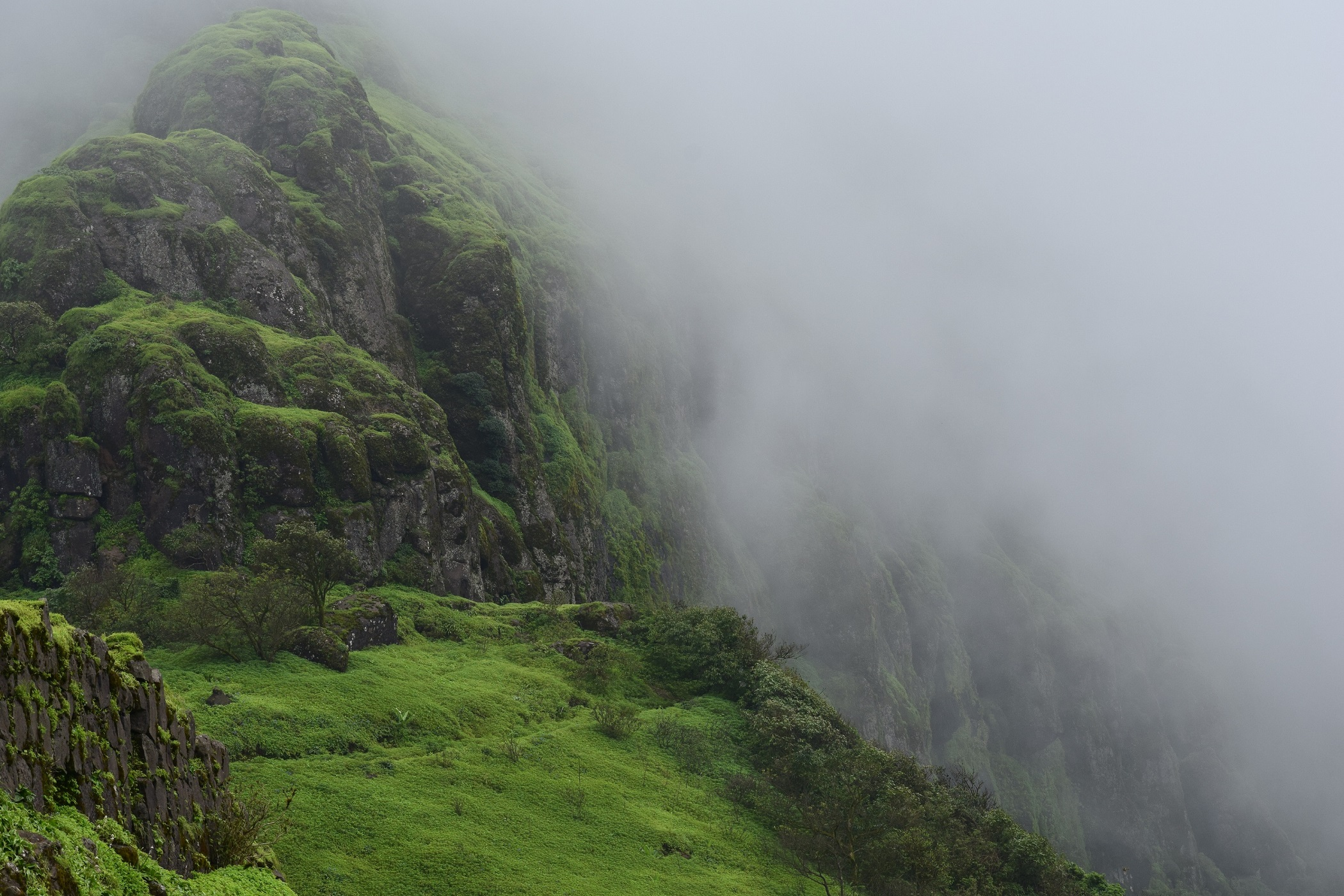 Rajgad Fort trekking photos mansoon DSLR 1 1 Rajgad Fort Pune - Information & Awesome Trekking experience