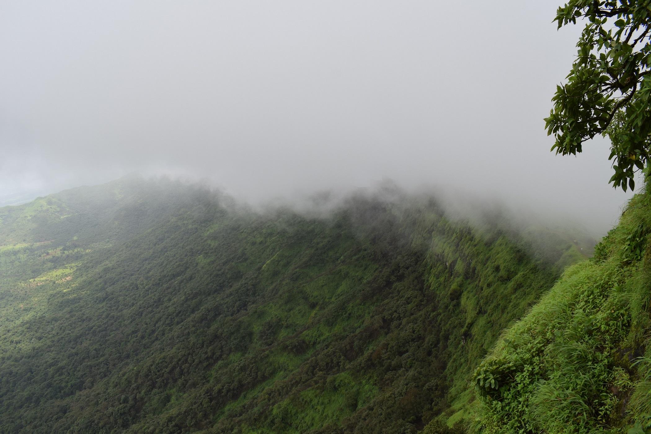 Rajgad Fort trekking photos mansoon DSLR 9 Rajgad Fort Pune - Information & Awesome Trekking experience