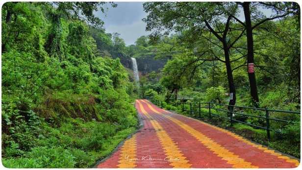 Radhanagari Rautwadi waterfall scenario राऊतवाडी धबधबा / Rautwadi waterfall a Memorable Visit of 1 day.
