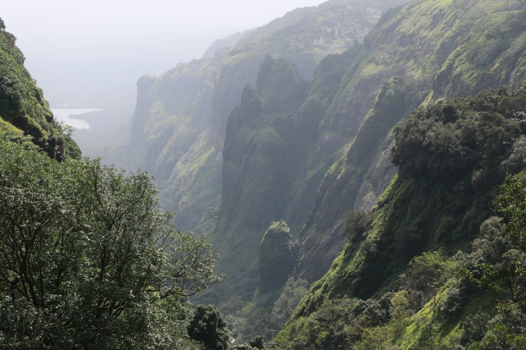 20200926142925 IMG 8058 Andharban Jungle trek Pune