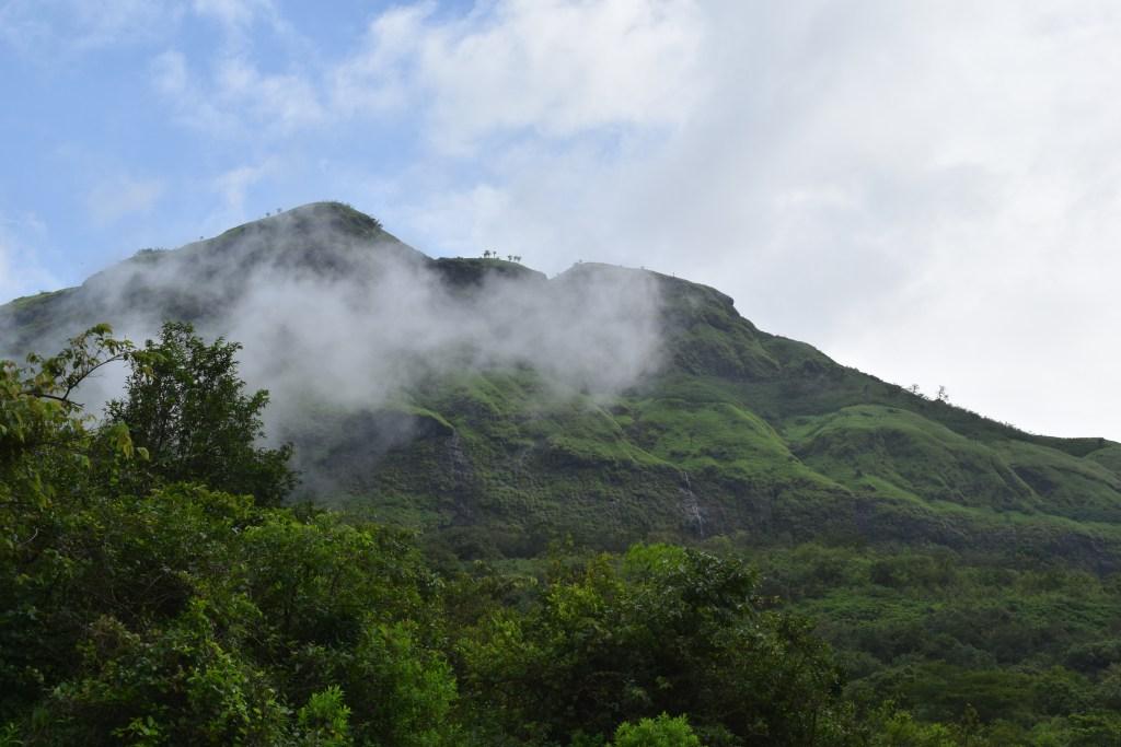 DSC 0408 Andharban Jungle trek Pune