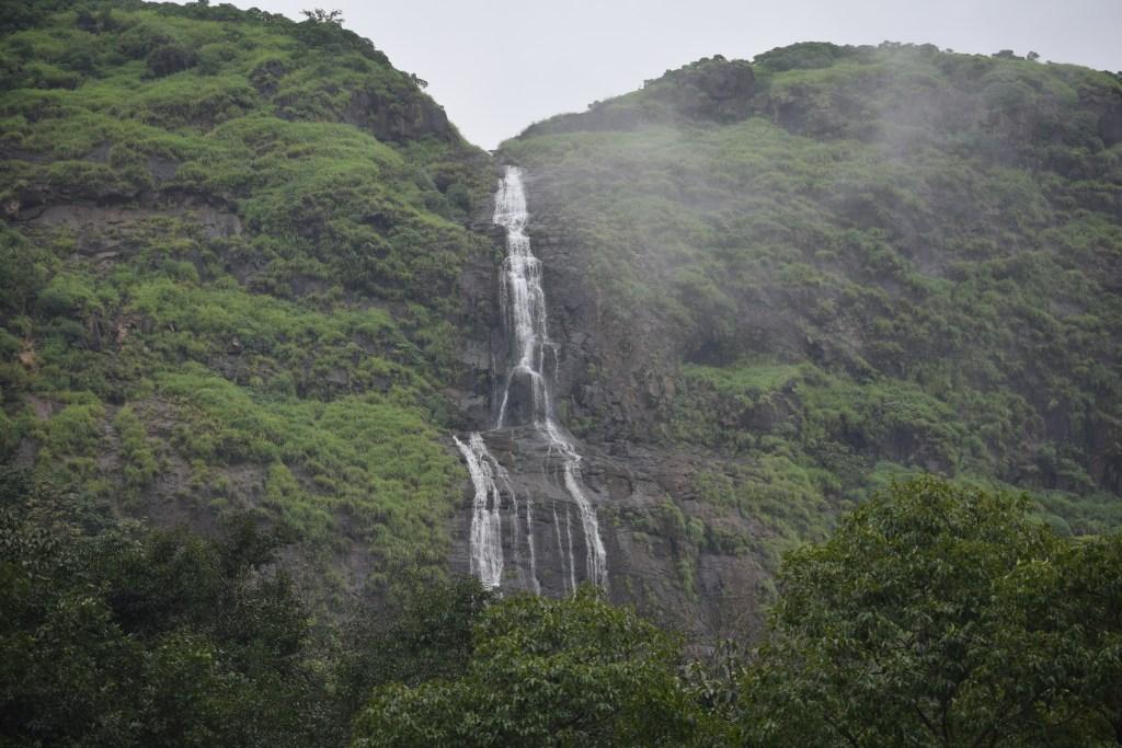 DSC 0476 Andharban Jungle trek Pune