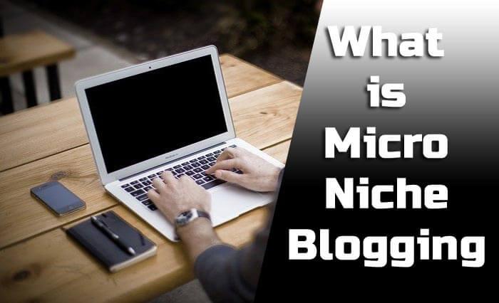 माइक्रोनिच ब्लॉग्गिंग क्या है? कैसे करे ? What is Micro niche Blogging in Hindi (2020)