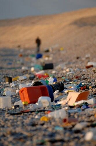 8 Reasons Why Recycling Will Save Our Earth