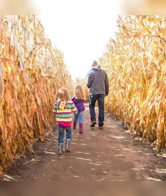 10 Things You Can Only Do During The Fall That You Don't Want To Miss Out On