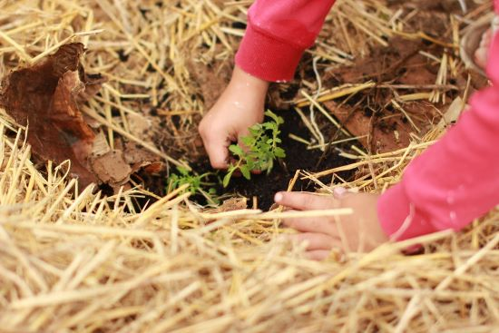 8 Earth Day Crafts To Properly Celebrate Our Planet