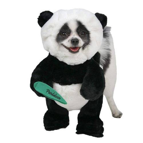 30 Dog costumes you will immediately want to order for Halloween
