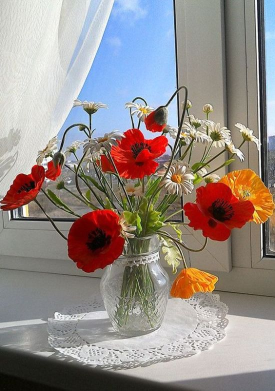 Benefits To Having Flowers And Plants In Your Home