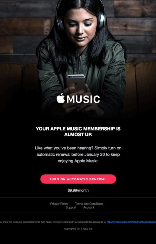 What Is Better, Apple Music Or Spotify?
