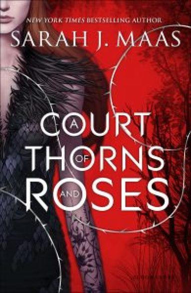 Best Young Adult Fantasy Novels You Can Sink Your Teeth Into