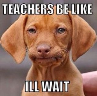 """Meme with a dog and text that reads: """"Teachers be like I'll wait"""""""