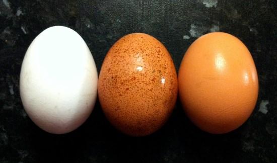 Super Food: Eggs